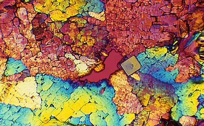 Assorted chemical crystal microphotos doug craft fine art collage 50 kb jpg image of collage by doug craft gumiabroncs Choice Image